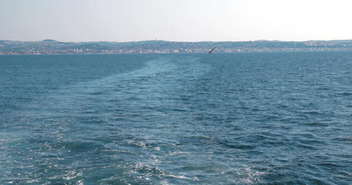 Boat trace in the sea, a Seagull flying on a background of beautiful seascape, l Footage