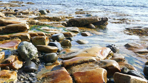 Rocky coastline in Maine Live Action