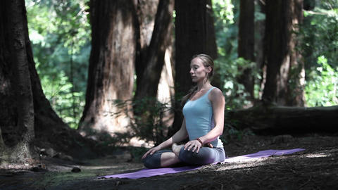 A woman does yoga exercises on a mat in the woods Stock Video Footage