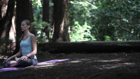A Young Woman Practices Yoga In A Quiet Forest stock footage