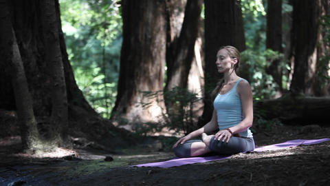 A young woman practices yoga in a quiet forest Stock Video Footage