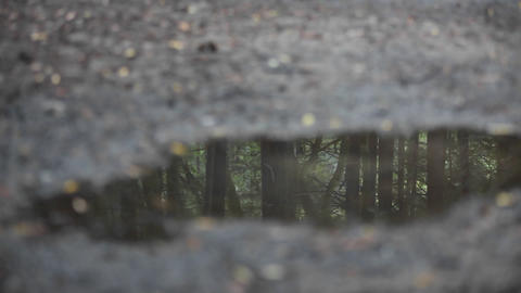 A woman jogs across a puddle reflecting the image of... Stock Video Footage