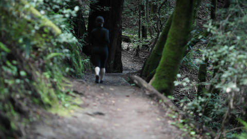 A woman jogs on a path in a wooded area Stock Video Footage