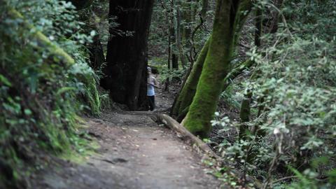 Women enjoying a brisk paced jog along a dirt path in the... Stock Video Footage