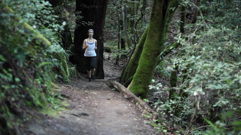 Women enjoying a brisk paced jog along a dirt path in the woods Footage