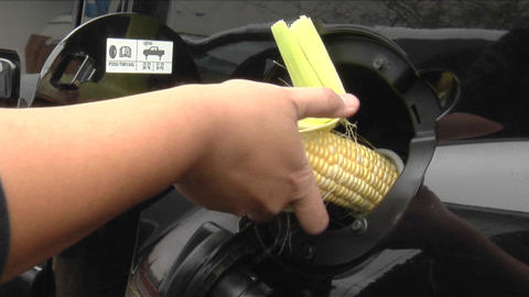 A person opens a car gas tank and sticks an ear of corn in Stock Video Footage