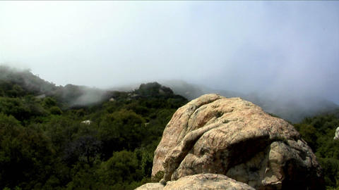 Fog rolls over a densely forested hillside Stock Video Footage