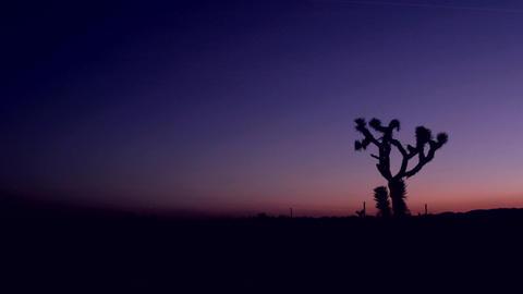 The sky darkens in the desert at golden hour Footage