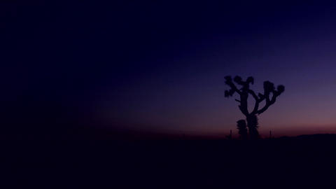 The sky darkens in the desert at golden hour Stock Video Footage