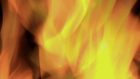 Bright orange flames flicker in a blazing fire Footage