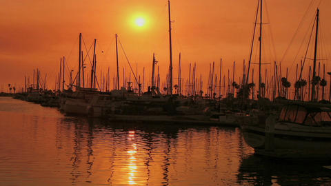 A harbor reflects sunlight during the golden hour Stock Video Footage
