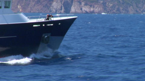 Dolphins jump and play in the bow wake of a boat Stock Video Footage