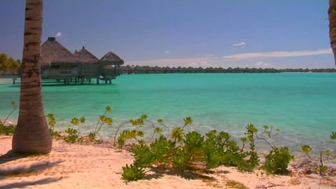 Tahitian palm trees and huts rest over turquoise water.... Stock Video Footage