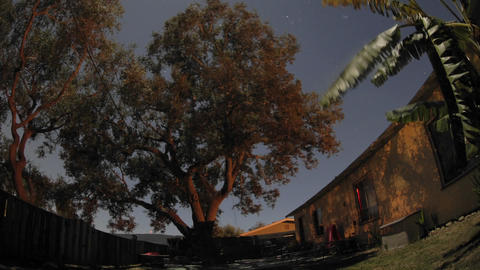 Zoom in overnight time lapse of full moon over an oak... Stock Video Footage
