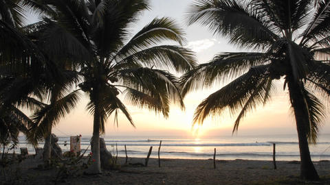 Time lapse of sunset, palms and surfers at La Saladita... Stock Video Footage
