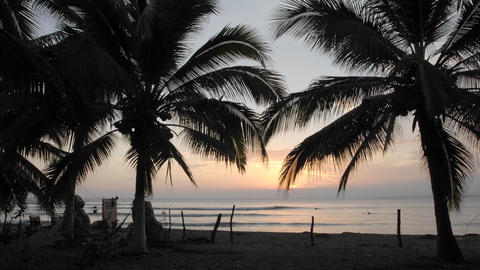 Time lapse of sunset, palms and surfers at La Saladita Beach in Guerrero, Mexico Footage