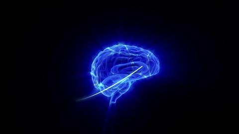 Human Brain Activity Stock Video Footage