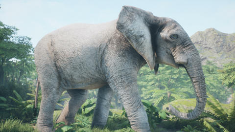 A large African elephant walks through the wild jungle on a sunny day. Animation for animals, nature Animation