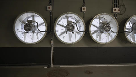 a range of large industrial fans with rotating blades. Industrial ventilation system Live Action