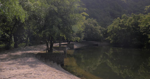 Path among the trees near pond. Trang An, Vietnam Footage