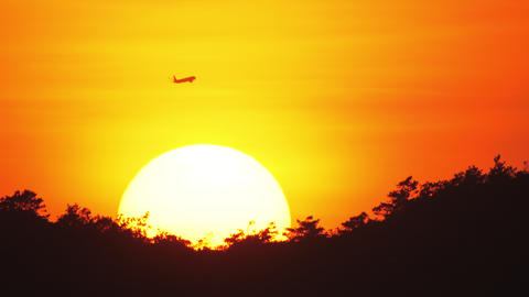 Passenger airliner flying by on the background of setting sun Live Action
