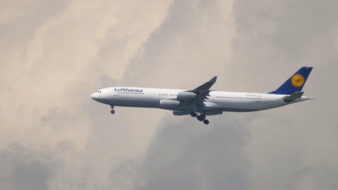 Lufthansa Airbus A340 on final approach for landing Live Action