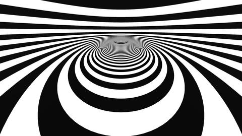 Hypnotic motion with black and white rings Animation