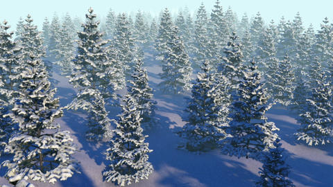 Snowy Forest Loop CG動画素材