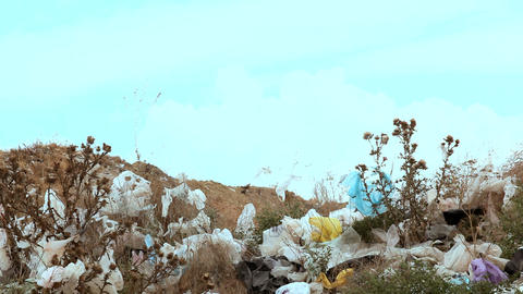 Dump garbage outside the city Footage