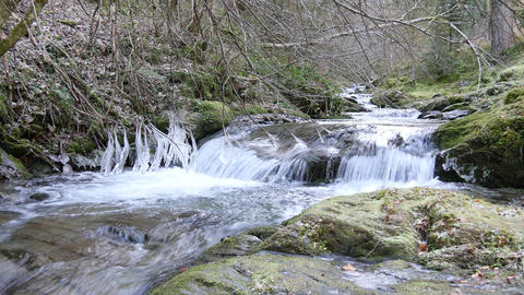 Cold mountain stream flowing over rocks in forest Footage