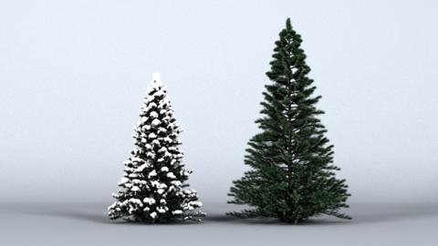 ChristmasTree 3D Model 3D Model