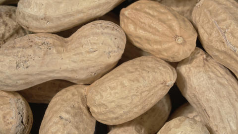 Rotation of peanuts close-up. Peanuts are unpeeled in the skin Live Action