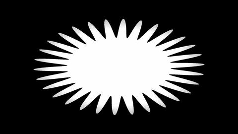 Expanding-collapsing floral shape Animation