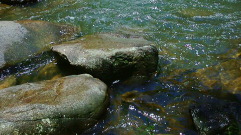 Waterfall from Pond Rocks to Foamy Stream Top among Green... Stock Video Footage