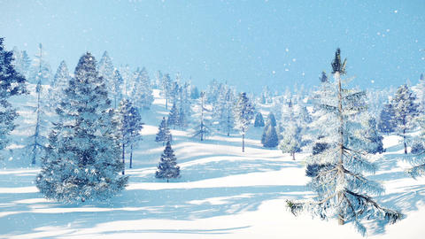Snow covered winter fir forest at snowfall Animation