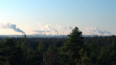 Mineral oil refinery with smoking chimneys on the horizon and natural coniferous Footage