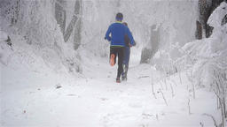 Three winter runners running on a snow covered forest trail on a foggy day Footage
