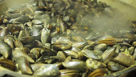 Seller showing fried mussels at seafood market. Seaside resort. Food-fest Footage