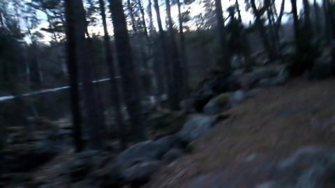 Evening Walk through ancient glacial moraine 1 Footage
