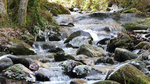 Beautiful brook flowing over rocks in winter time 影片素材