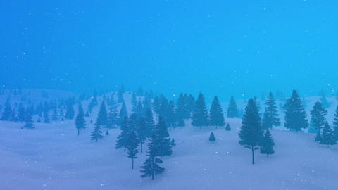 Winter mountain fir forest in bad weather Animation
