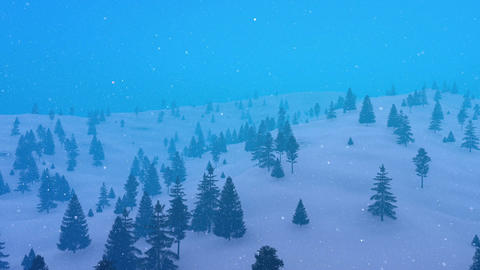 Winter fir forest in mountain at heavy snowfall Animation