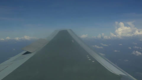 Wing Stock Video Footage