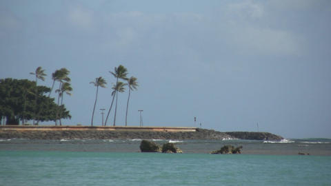 alamoana beach Stock Video Footage