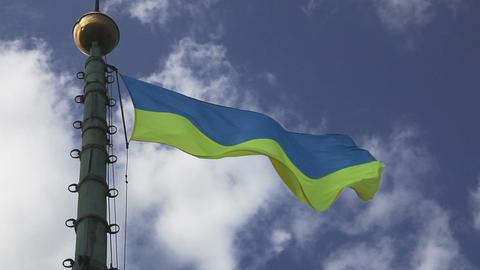 Ukrainian flag waving on cloudy pattern Footage