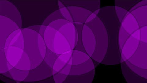 purple circle light,defocused circle lights drifting... Stock Video Footage