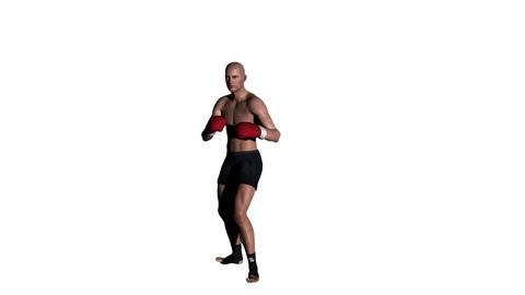 ボクシング スタイル Stock Video Footage