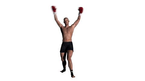 ボクシング スタイル Animation