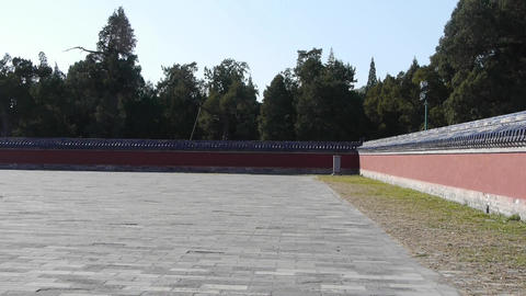 China red wall & pine,royal ancient architecture Stock Video Footage