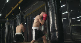 Boxer training punching bag 4k video. Fighter blows jab cross punch series Footage